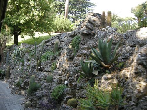 I giardini vaticani - Giardino roccioso piante ...